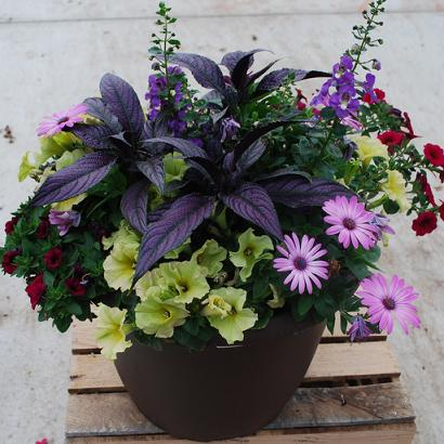 Patio planters from meadowridge inc - Best flower combinations for containers ...